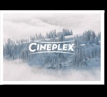 Onlinegutschein Winterwald