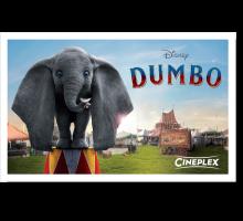 Onlinegutschein Dumbo