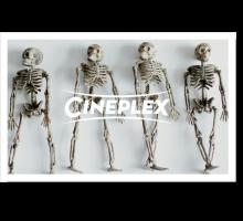 Onlinegutschein Knochengeklapper