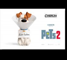 Onlinegutschein Pets 2