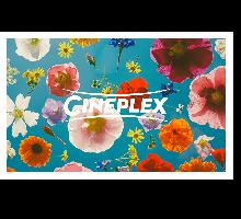 Onlinegutschein Blumen